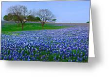 Bluebonnet Vista - Texas Bluebonnet Wildflowers Landscape Flowers  Greeting Card
