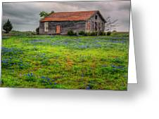 Bluebonnets And Abandoned Farm House Greeting Card