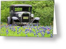 Bluebonnets And Fords Greeting Card