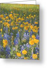 Bluebonnets And Wildflowers Greeting Card