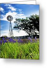 Bluebonnets With Windmill Greeting Card