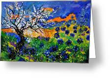 Bluecornflowers 451120 Greeting Card