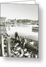 Bluefin Tuna At Barnstable Harbor Greeting Card