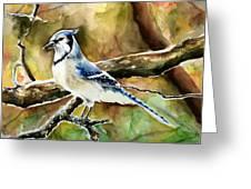 Bluejay Greeting Card