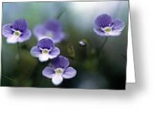 Bluettes Greeting Card