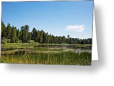 Bluff Lake Ca 3 Greeting Card