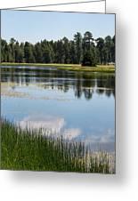 Bluff Lake Ca 4 Greeting Card