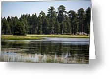 Bluff Lake Ca 6 Greeting Card