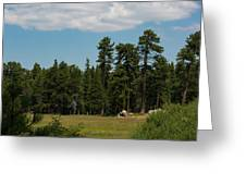 Bluff Lake Ca 7 Greeting Card