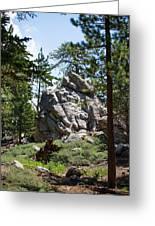 Bluff Lake Ca Boulders 1 Greeting Card