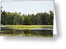 Bluff Lake Ca Island 3 Greeting Card