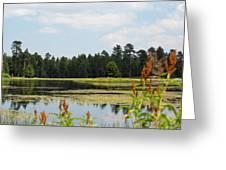 Bluff Lake Ca Wild Flowers 11 Greeting Card