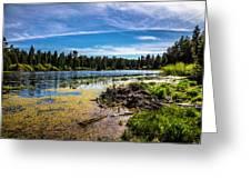 Bluff Lake  Greeting Card