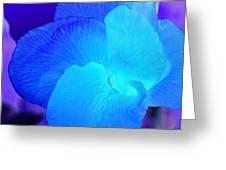 Blurple Flower Greeting Card