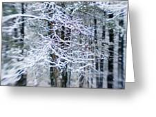 Blurred Shot Of Snow-covered Trees Greeting Card