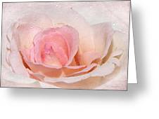 Blush Pink Dewy Rose Greeting Card