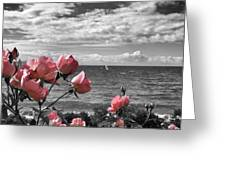Blustery Summer's Day  Greeting Card