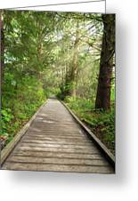 Boardwalk Along Hiking Trail At Fort Clatsop Greeting Card