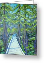 Boardwalk At Cypress Preserve Greeting Card
