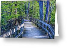 Boardwalk Going Into The Woods Greeting Card
