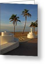 Boardwalk Palms Greeting Card