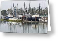 Boat Basin Color Greeting Card