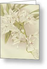 Boat Orchid  Cymbidium Greeting Card