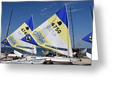 Boats 168 Greeting Card
