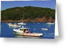 Boats At Bar Harbor Greeting Card