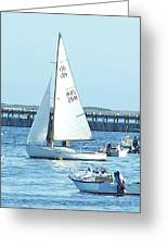 Boats At Provincetown Greeting Card