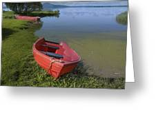 Boats By The Lake Iceland  Greeting Card