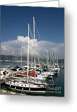 Boats In Port Tuscany Greeting Card