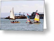 Boats Race Greeting Card