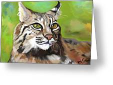 Bobcat Katta Greeting Card