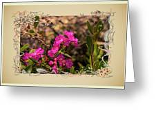 Bog Laurel Flowers Greeting Card