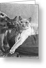 Bogey And Bacall Greeting Card