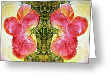 Bogomil Anniversary Flower - Digital Greeting Card