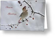 Bohemian Seasons Greetings Greeting Card