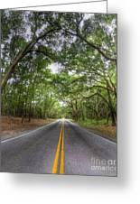 Bohicket Road Johns Island South Carolina Greeting Card