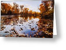 Boise River Autumn Glory Greeting Card