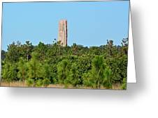 Bok Tower In December Greeting Card