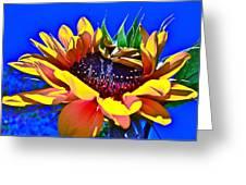Bold Greeting Card