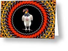 Bolero Greeting Card