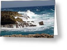 Bonaire North Shore 1 Greeting Card