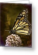 Boneyard Butterfly Greeting Card