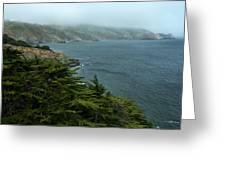 Bonita Cove Greeting Card