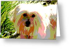 Bonnie In Color Greeting Card