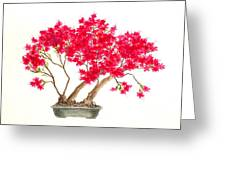 Bonsai Tree - Kurume Azalea Greeting Card