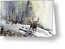 Boone And Crockett Greeting Card