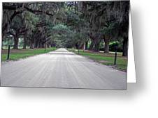 Boone Hall Plantation Greeting Card by Steavon Horne